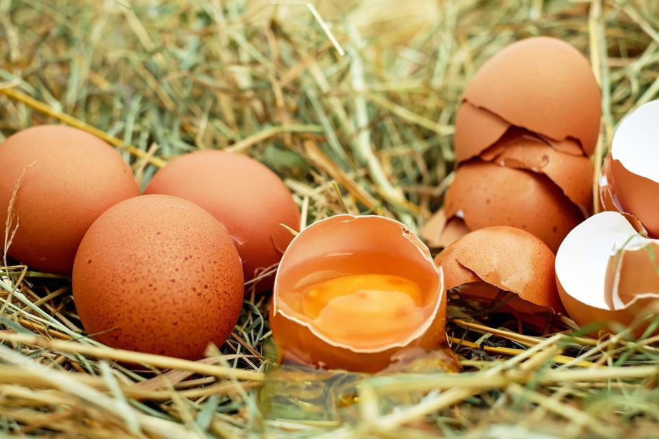 Rot et œuf pourri dans la bouche : que faire ?