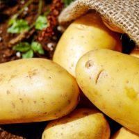 Gluten dans les pommes de terre ?